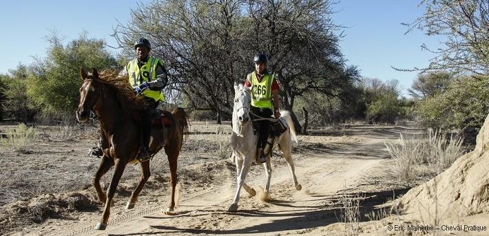 Course d'endurance en Namibie - Caval&go