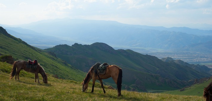 Equipements et accessoires pour une rando à cheval en Asie