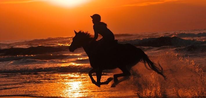 Equipements et accessoires pour une rando à cheval en France