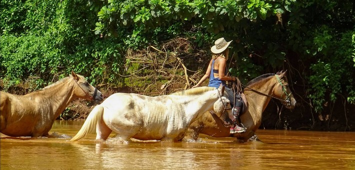 Mon cheval sait-il nager ?