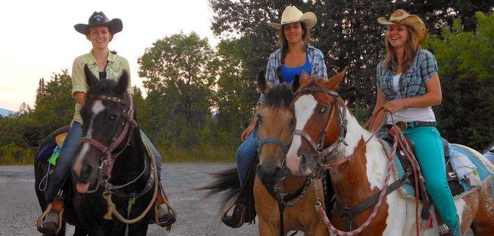 Caractéristiques du cheval canadien