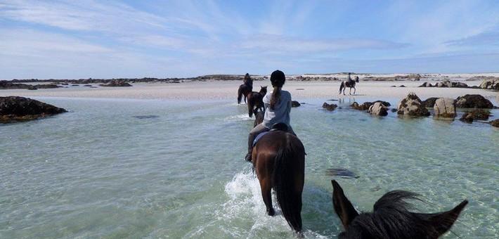 Equipements et accessoires pour une rando à cheval en Europe