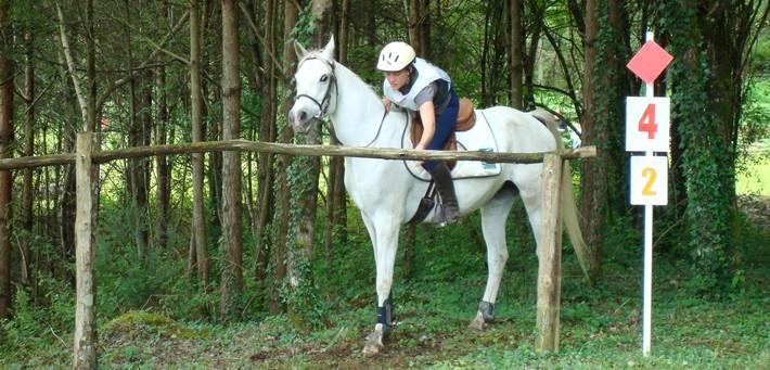 Le TREC en équitation (Techniques de Randonnée Equestre de Compétition)