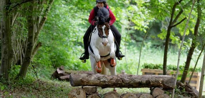 Présentation du TREC en équitation