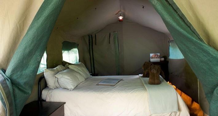 Camp de brousse au Botswana