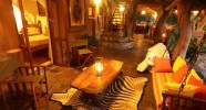 Safari à cheval au Waterberg - Lodge Nest - Standard
