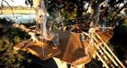 Tree House - Une nuit à la belle étoile dans les arbres