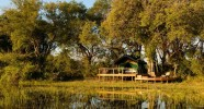 Campement Delta de l'Okavango au Botswana