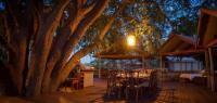 Tree Camp - Caval&go