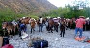 Bivouac gaucho des randonnées équestres en Argentine
