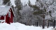 Ferme équestre en laponie suédoise