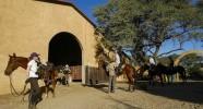 Ecuries du lodge pour la safari équestre en Namibie