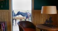 Ranch en Arizona - randonnée équestre et élevage de Longhorn - Caval&go