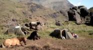randonnée équestre au Chili en bivouac