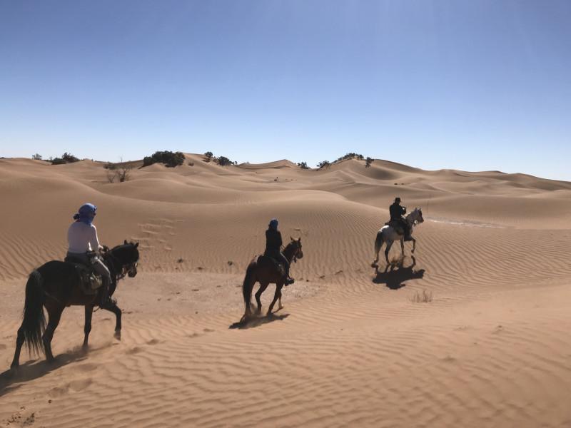 Grande étendue de sable