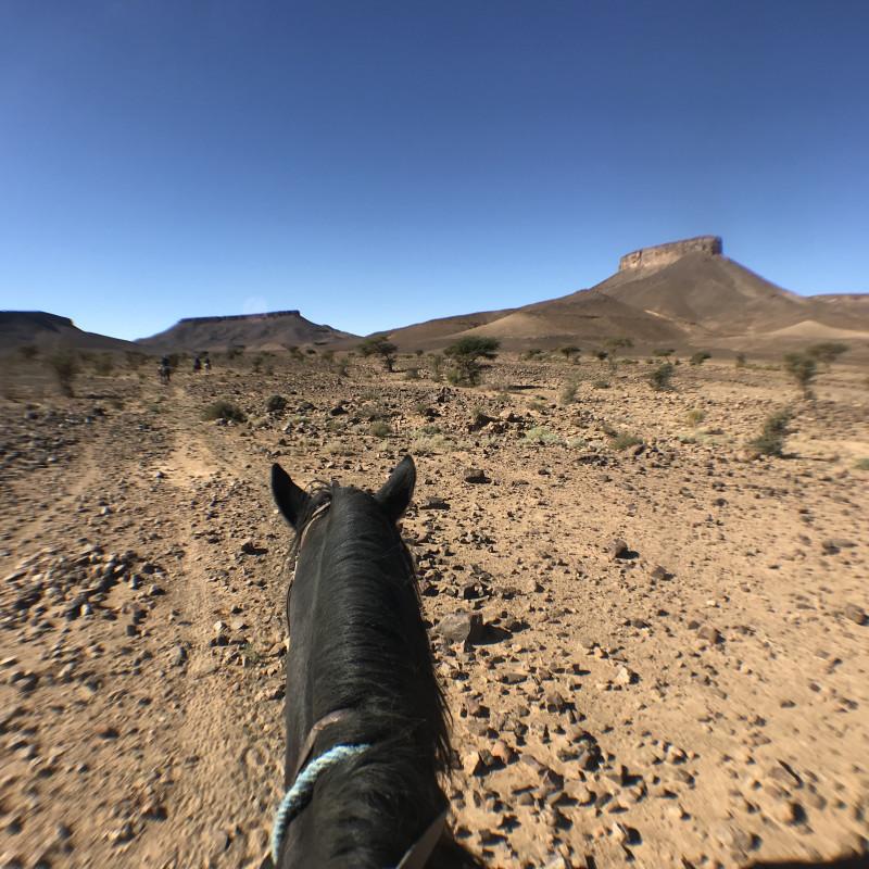Grande étendue désertique