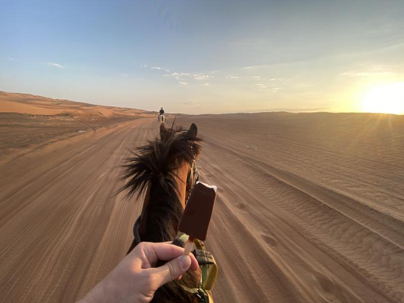 A cheval dans le désert