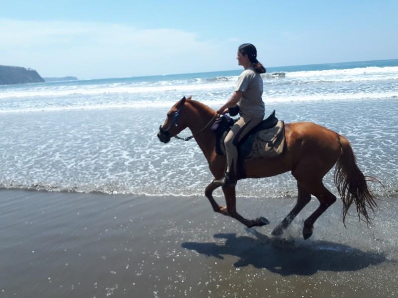 Au galop sur les plages du Costa Rica