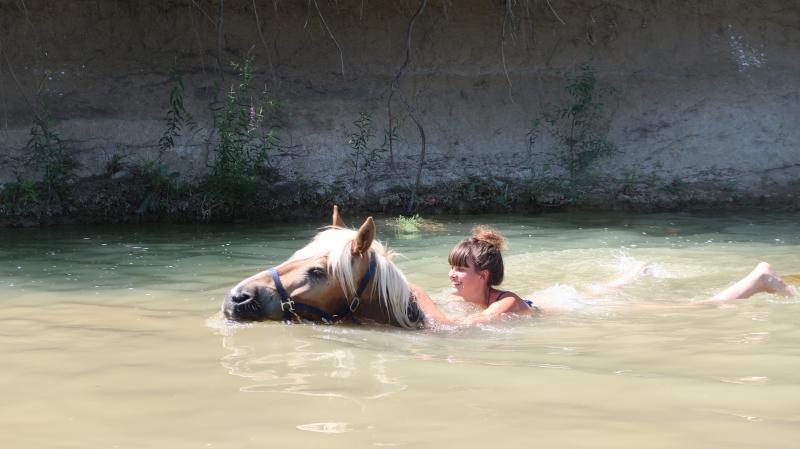 Baignade à la rivière (1)