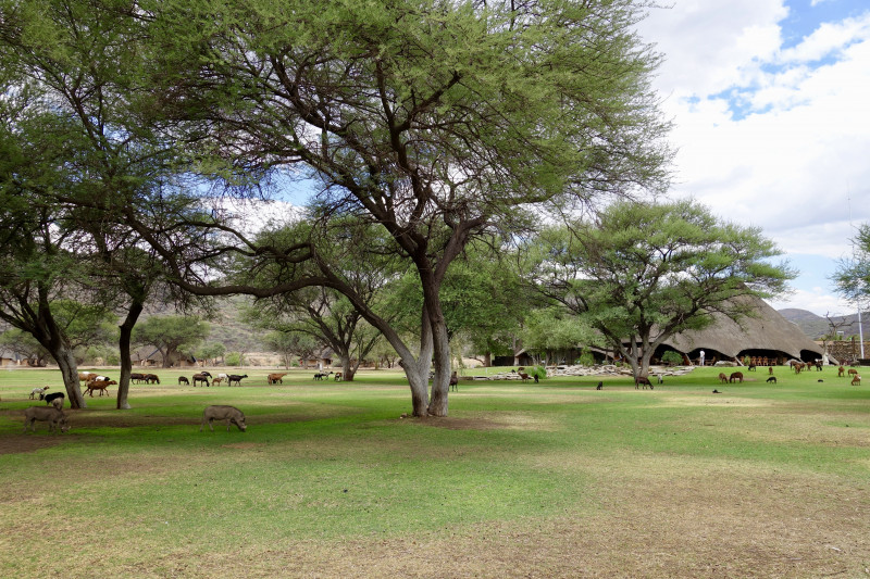 Parc du ranch