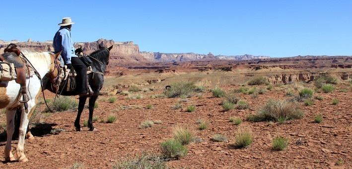 Jour 6. Parc National d'Escalante Canyon – Torrey