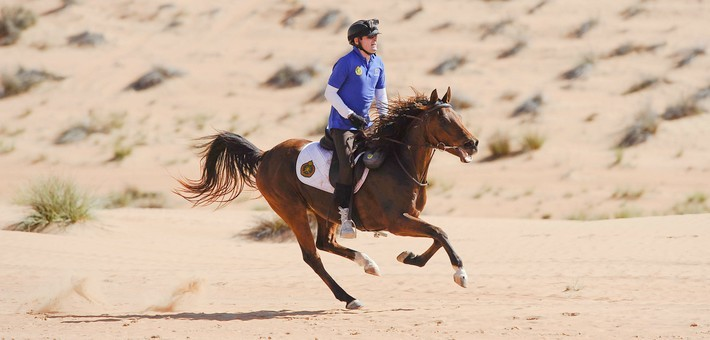 Exclusif ! Gallops of Morocco