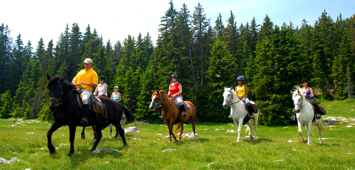 Week-end à cheval adultes dans les Alpages du Vercors