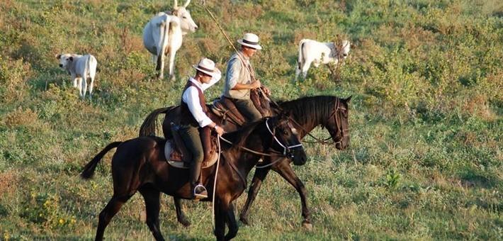 sites de rencontre pour les cow-boys