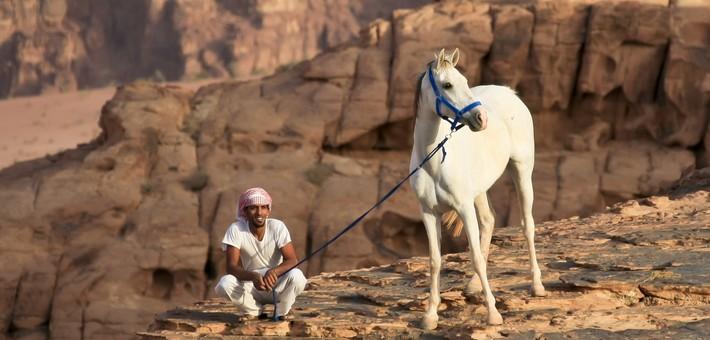 Merveilles De À La Randonnée Jordanie 5 Des Cheval Découverte 8wnXkP0O